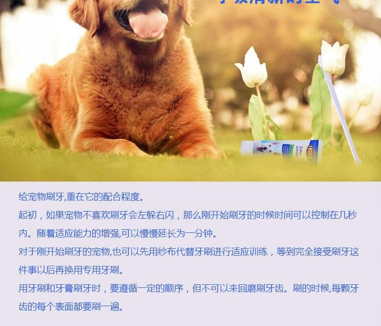 特瑞仕Trixie 猫狗通用清洁口腔薄荷牙膏套装100g 去口臭牙菌斑牙结石