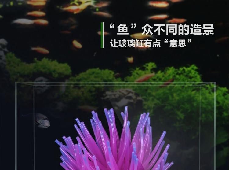 聚宝源水族箱鱼缸水池造景仿真海胆海胆