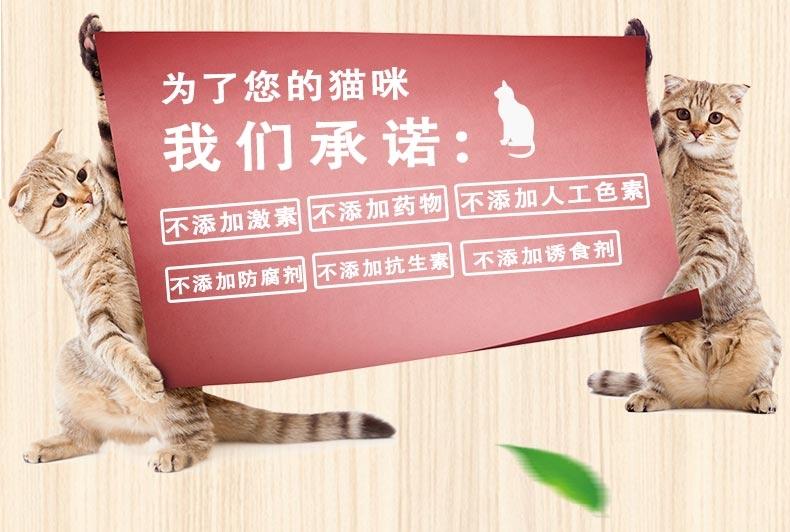路斯 三文鱼肉丁 35g*4 美毛亮毛猫零食