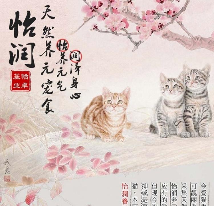 怡润 猫用秘制银鱼片30g 猫零食