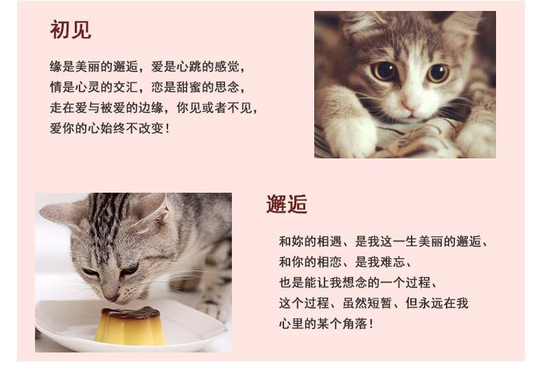 伊纳宝 猫用金枪鱼、鸡小胸肉与扇贝味湿粮35g
