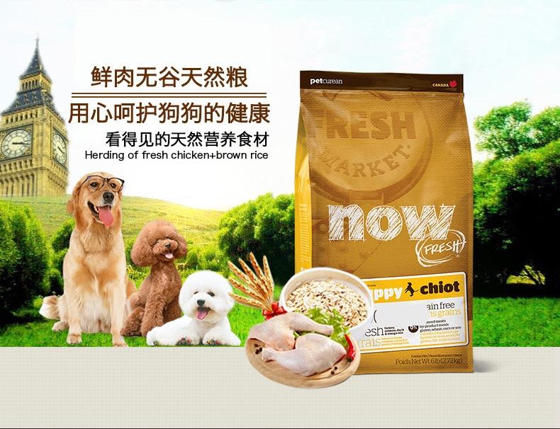 NOW FRESH 无谷配方幼犬粮 6磅【保质期至2020年2月2日】