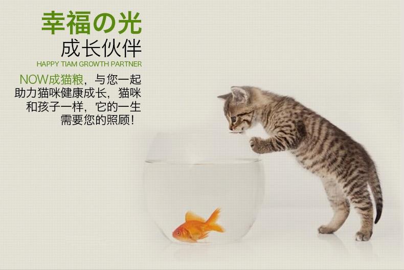NOW FRESH 无谷配方成猫粮8磅【保质期至2018/6/24】