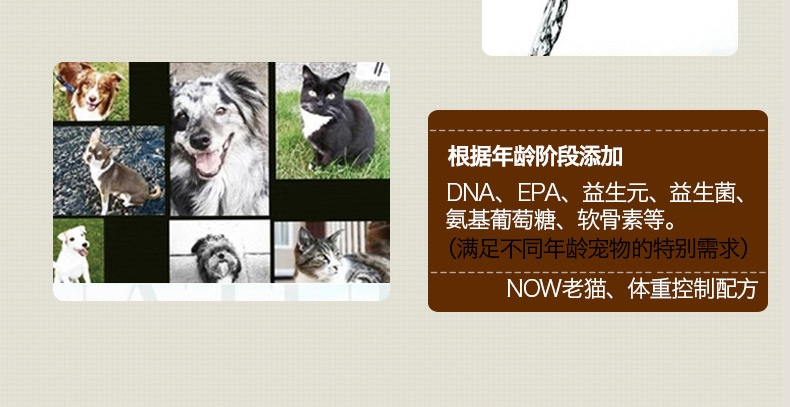 NOW FRESH 无谷老猫及减肥配方猫粮4磅1.81kg