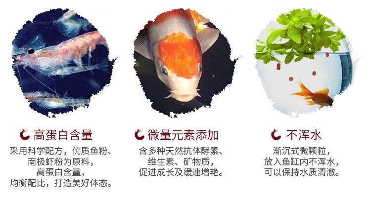 鱼食锦鲤饲料 锦跃色扬螺旋藻增艳育成观赏鱼粮金鱼饲料金鱼鱼食