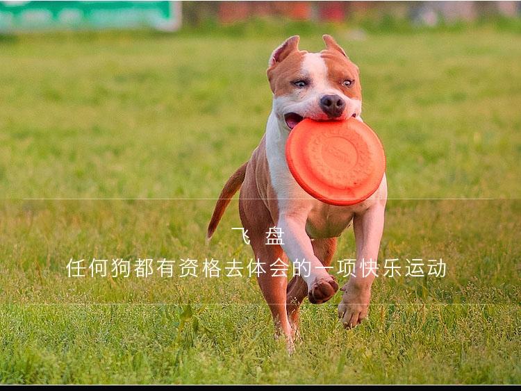 酷极Kyjen 爱乐风狗狗飞盘 宠物飞盘玩具