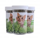 AFP 天然猫薄荷25g瓶装*3 去毛球 助消化  猫零食