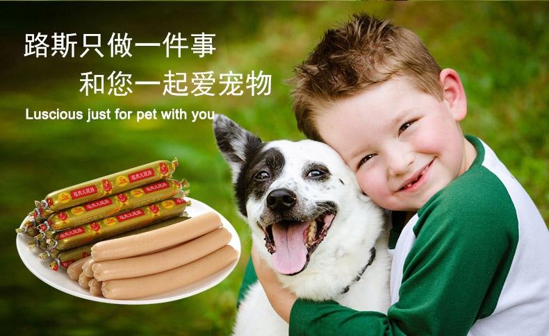 路斯 火腿肠单只15g*30 训练 奖励 狗零食