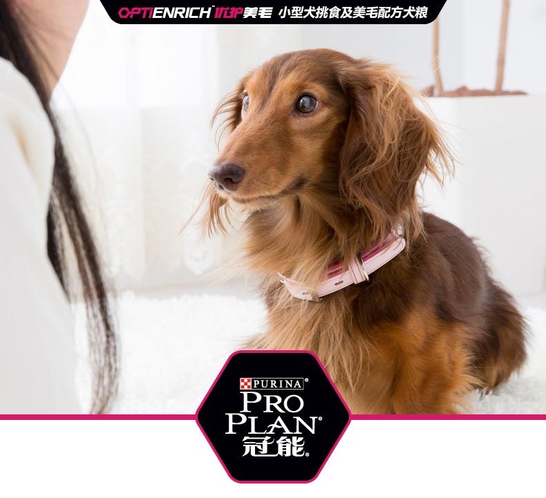 冠能PROPLAN 小型犬成犬挑食及美毛配方全价狗粮800g