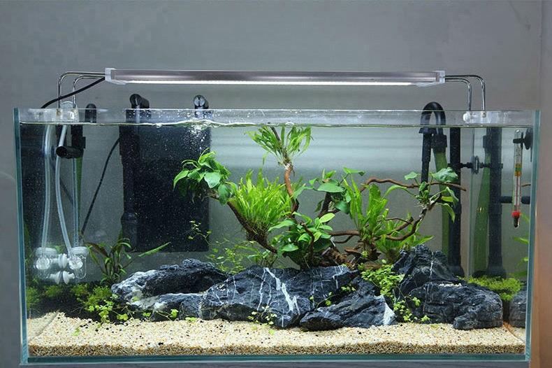 森森缸外过滤器壁挂式鱼缸过滤桶水族箱外置静音(送滤材过滤棉)HBL-802