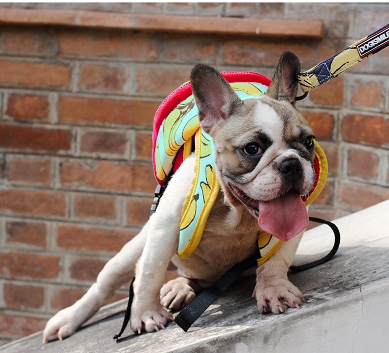 Dogismile 时尚生活风宠物自背包 多色可选