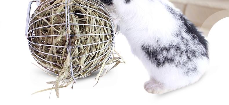洁西Jessie 兔子豚鼠龙猫不锈钢草球草架玩具