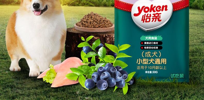 怡亲Yoken 小型成犬试吃装 50G