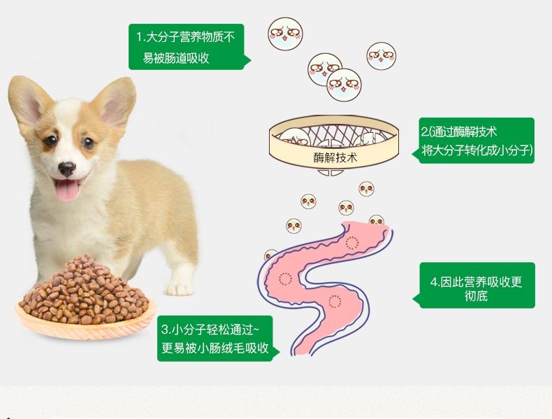 怡亲Yoken 小型幼犬试吃装 50G