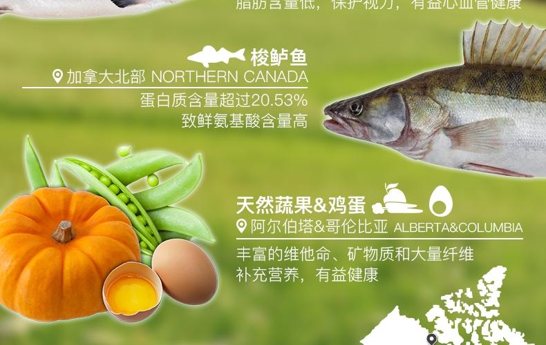 Orijen渴望 无谷幼犬配方狗粮 11.4kg【保质期2019年9月】