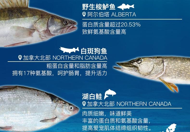 Orijen渴望 六种鲜鱼海藻配方全猫粮1.8kg
