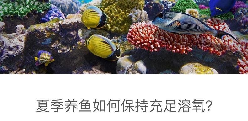 佳宝大功率增氧泵静音鱼池冲氧气泵