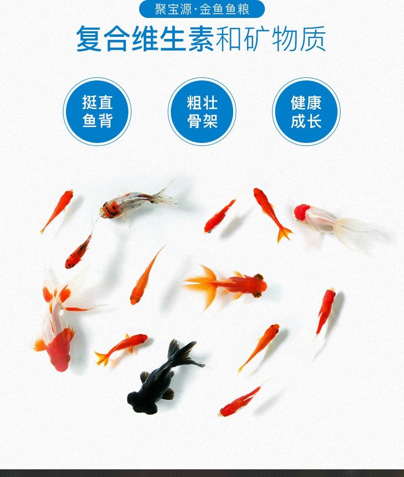 聚宝源 金鱼鱼粮1.2mm颗粒 500g