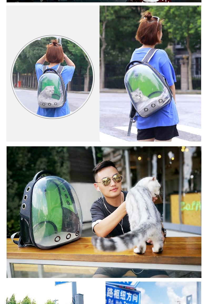 多可特宠物出行便携背包可爱蓝小熊