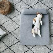小佩 四季深睡床垫