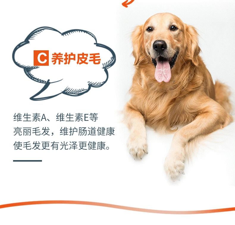盖夫 猫狗宠物多维营养膏120g