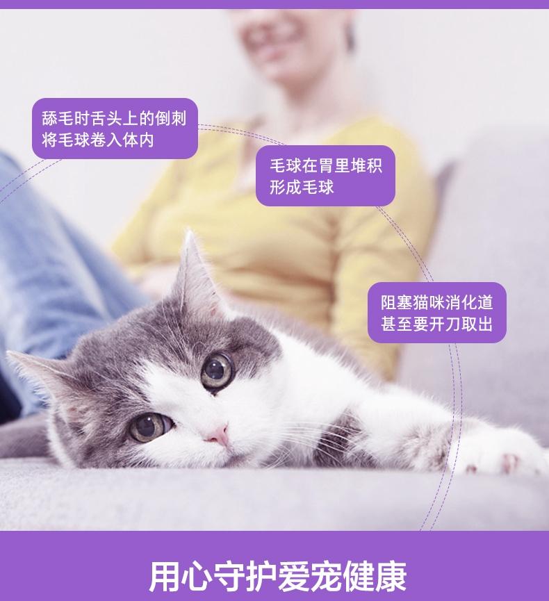 卫仕 化毛膏 猫用 120g