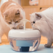 酷極 FilterX寵物飲水機 犬貓飲水器