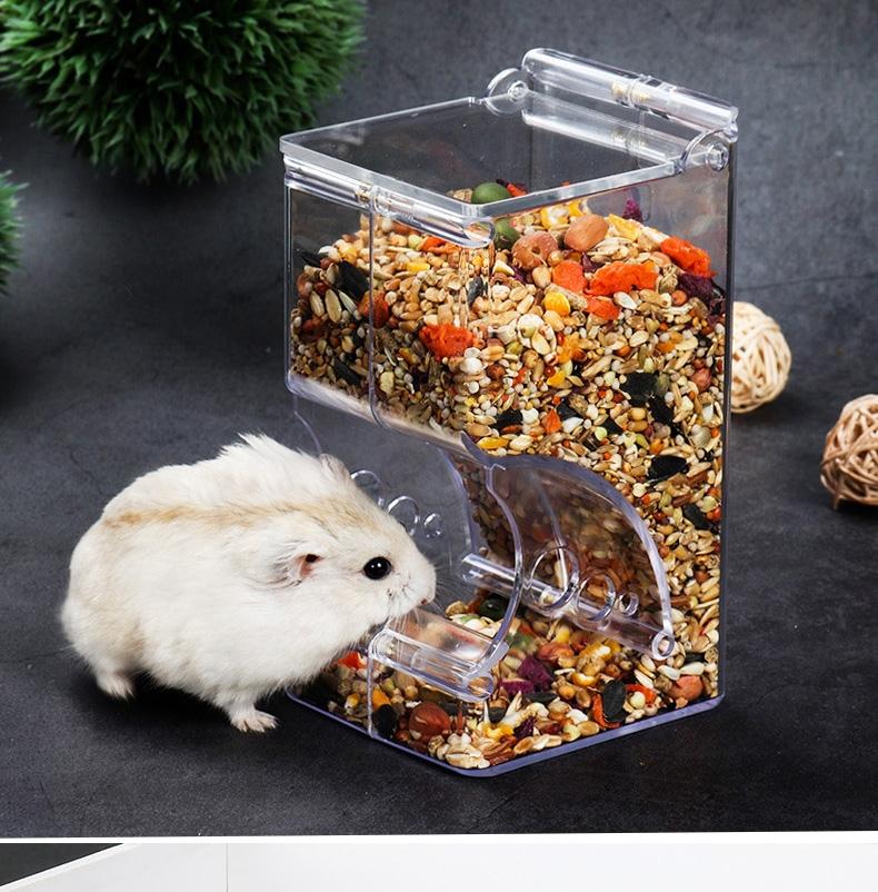 zoog组格酷品 小宠自动喂食器注塑款