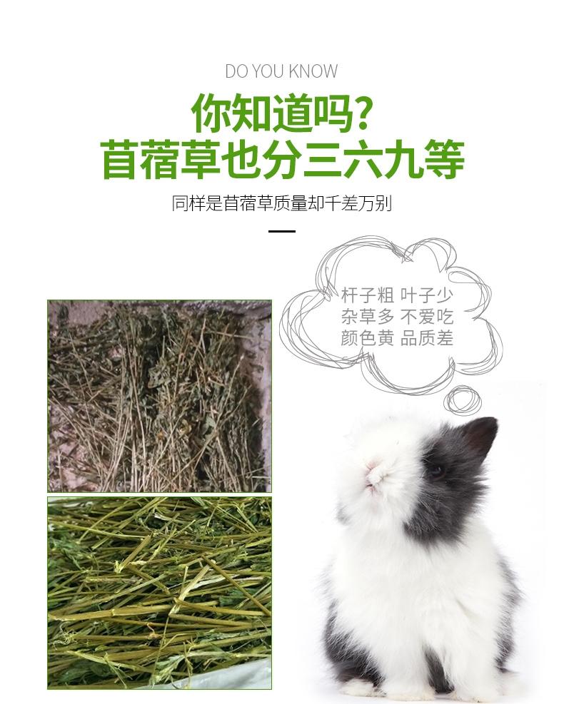 洁西JESSIE 牧草菁华苜蓿草兔粮兔草 1kg 杆细易磨牙