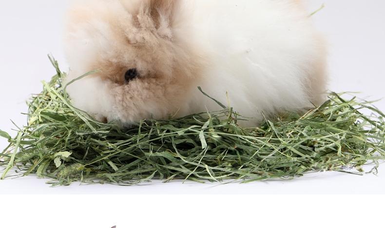 洁西JESSIE 洛基山脉梯牧草兔粮 500g 调理肠胃 助消化