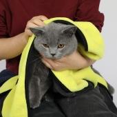 多可特 宠物洗澡毛巾 犬猫通用 快速吸水 不易掉毛
