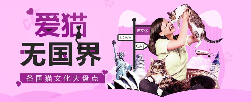 爱猫无国界:各国猫文化大盘点
