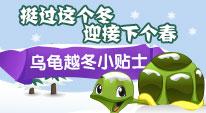 挺过这个冬,迎接下个春——乌龟越冬小贴士