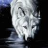 魔狱の冥狼