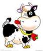 快乐♂小牛