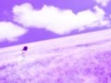 紫色的云朵