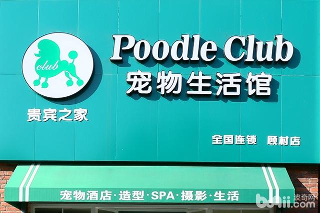 poodle club貴賓之家寵物生活館