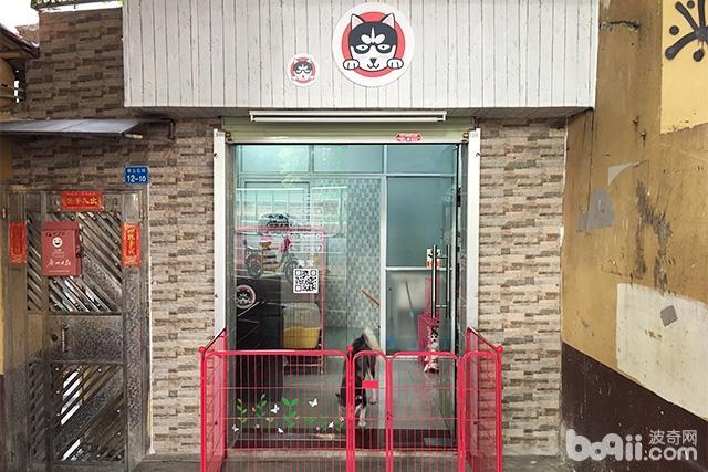 哈士奇宠物店