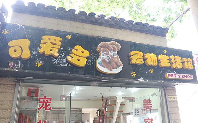 【平江路】可爱多宠物生活馆