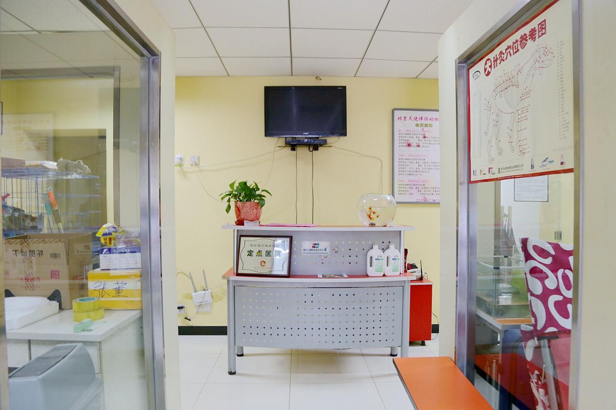 北京天使伴侣365棋牌娱乐城_365棋牌唯一官网活动_365棋牌电脑下载手机版下载医院