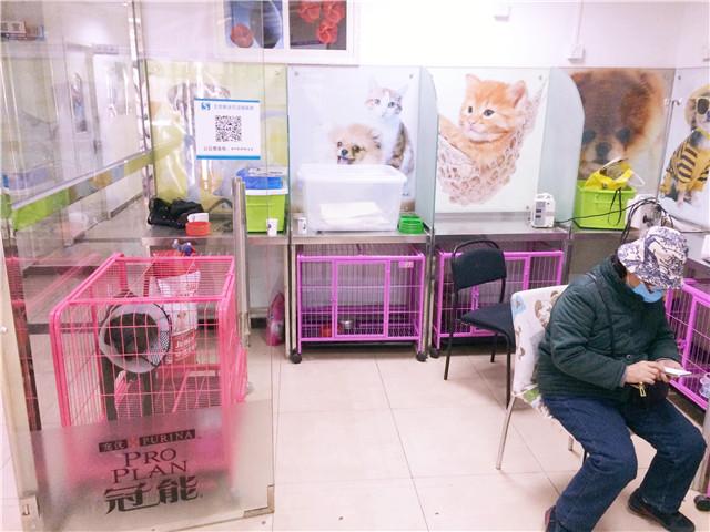 北京斯诺比动物医院