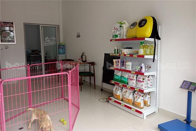 50平米宠物店装修图片