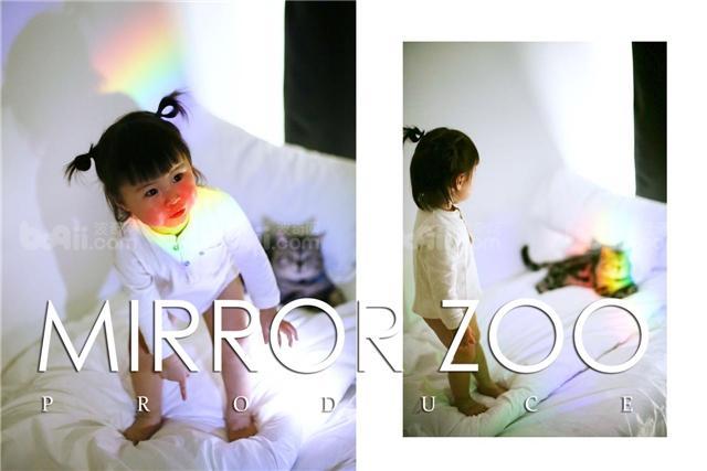 镜子动物园宠物摄影-杭州波奇服务