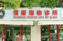 【世纪公园】上海恒爱宠物诊所 流浪猫(母猫)绝育套餐(气麻)