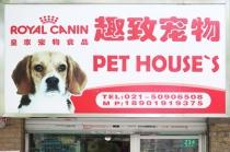 【临沂/南码头】趣致宠物 5kg以内狗狗洗澡+美容造型套餐