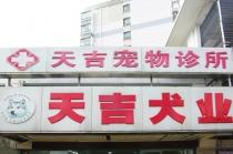【上南地区】天吉宠物诊所 5kg以内公猫公犬绝育套餐(肌肉麻醉)