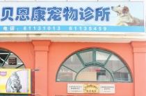 【春申地区】贝恩康宠物诊所 10kg以内公犬绝育套餐(针麻)