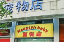 【中原地区】淘气宝贝宠物店 猫咪洗澡套餐