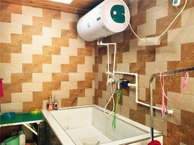 宠物洗澡池装修效果图