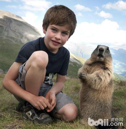 12岁的男孩与他的土拨鼠朋友!